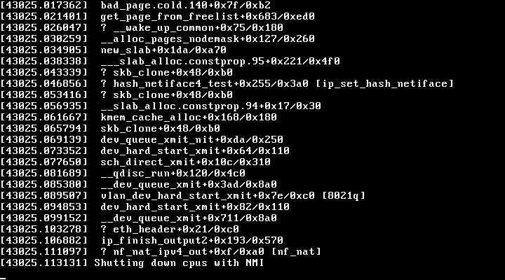 Kernel panic from the console of aebi.m.faelix.net